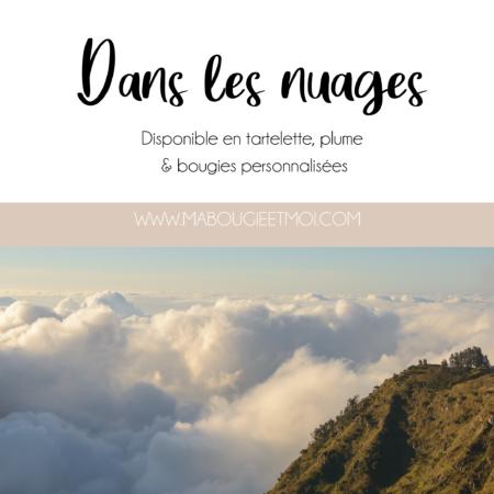 DANS_LES_NUAGES